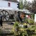Vorbereitungen zum Yard Fest
