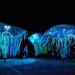 Compagnia Teatrale Corona - Tempus Fugit